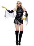 DC Comics Batgirl Metallic Superhero Costume