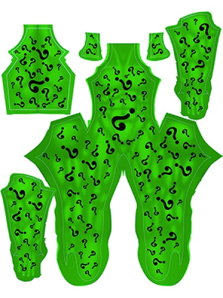 The Riddler Costume DC Comics Printing Cosplay Costume