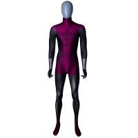 Beast Boy Teen Titans DC Comics Superhero Costume