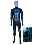Nightwing Costume DC Comics Halloween Superhero Costume
