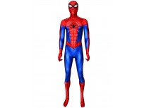 Spider-Man: Into the Spider-Verse Spider-Man Cosplay Costume
