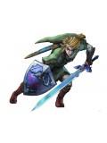 The Legend of Zelda Costume